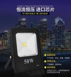 LED投光灯50W 节能高亮工程投光户外投光灯大功率