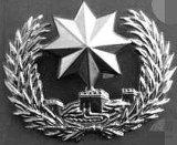 保安八角银色帽徽