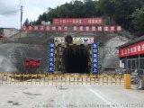 隧道门禁电子标签(ML-T80)