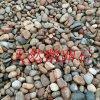 天然鹅卵石 变压器垫层石头 园林绿化鹅卵石