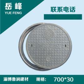 山东绿化井盖复合树脂井盖盖板窨井盖直径700*30mm 黑色