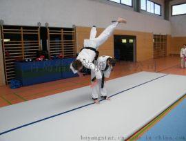 武术特技 柔道散打 空翻体操 摔跤地垫 充气垫