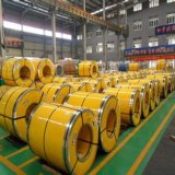 现货供应316不锈钢 钢板 钢管 钢带 钢棒零切圆钢