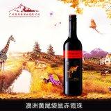 澳洲原瓶原装进口黄尾袋鼠赤霞珠干红葡萄酒