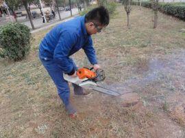 汽油,电动,带土球起苗机 挖树机 刨树机生产厂家图片