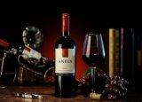 智利原瓶進口ANDIS安狄斯赤霞珠紅葡萄酒750ml