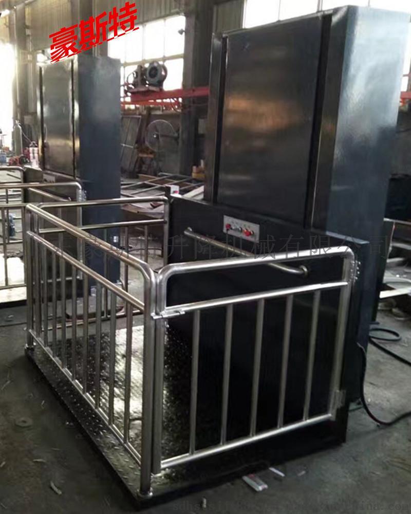 厂家供应液压家用电梯 曳引升降机【价格,厂家,求购图片