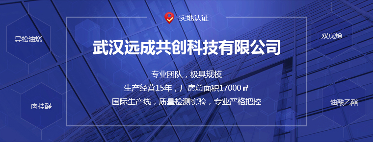 武汉远成共创科技有限公司