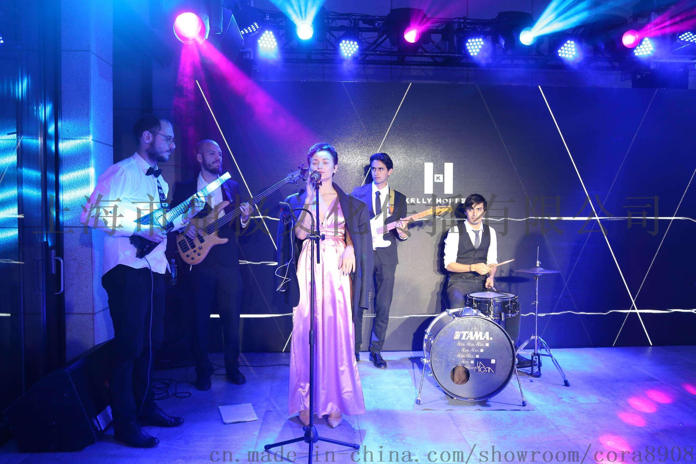 乐器类表演节目,尽在上海鼎极文化年会演艺供应公司.图片