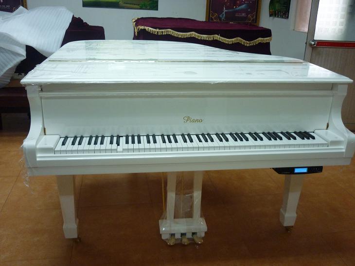 欧尔雅c5钢琴自动演奏系统图片
