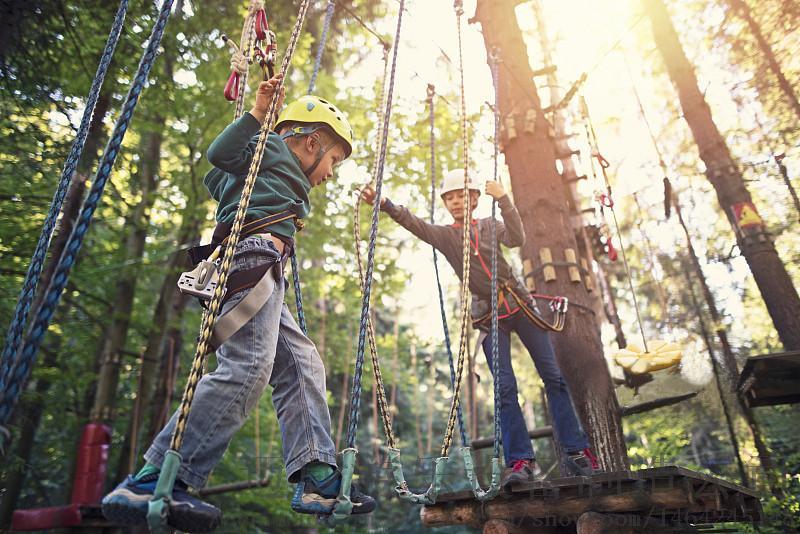 无动力丛林拓展系列设备儿童丛林穿越木桩吊桥