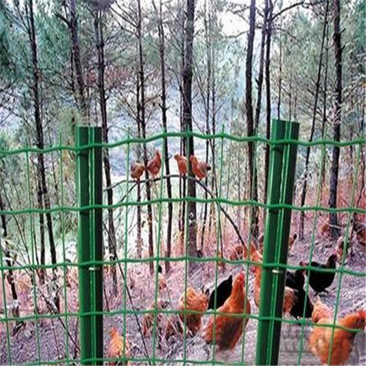 包山养殖围栏网/圈山种植围栏网/四川山林养殖