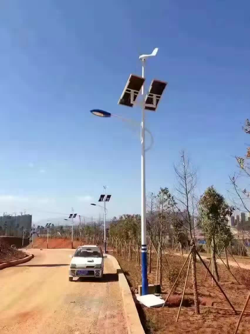 led太阳能路灯新农村景观庭院路灯市电风能风光互补户外灯6米8米图片