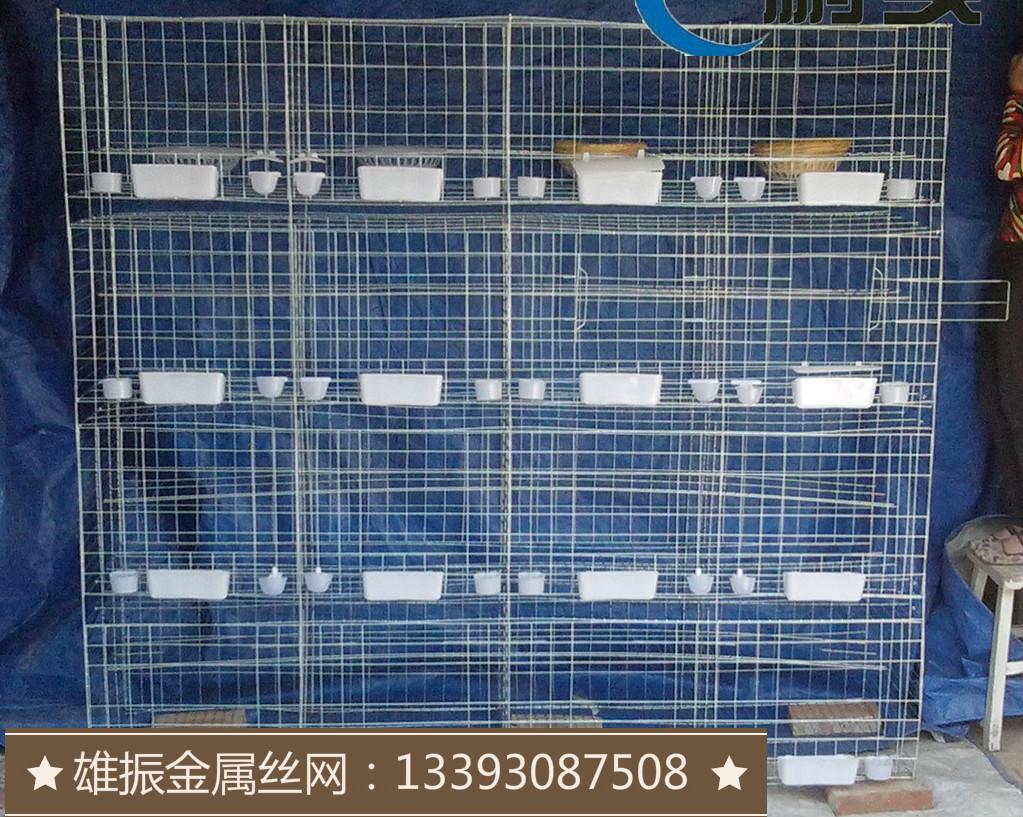 钢丝镀锌养殖三层12位鸽子笼 鸽笼子图片