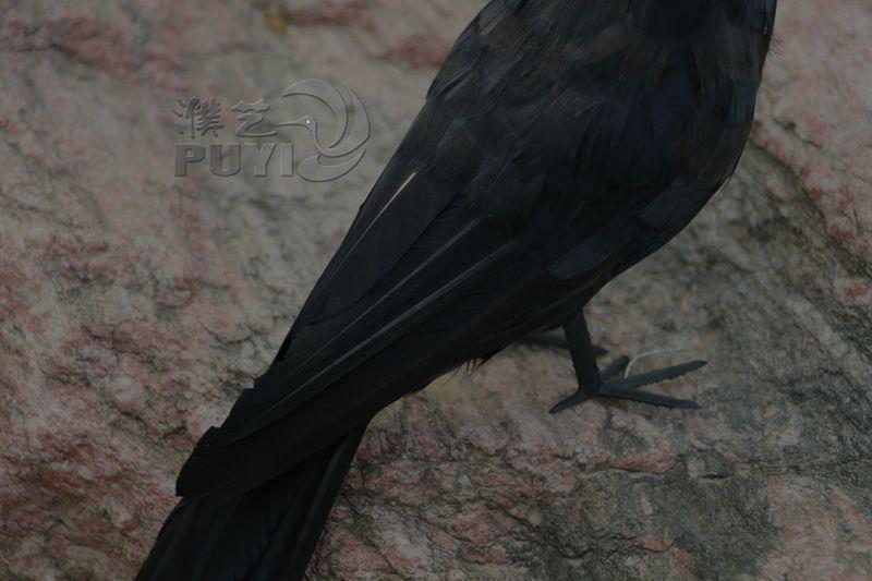 丹顶鹤的嘴做的饰品