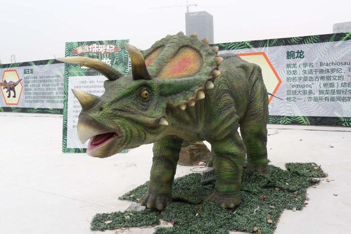 动物 恐龙 盆景 盆栽 植物 698_465