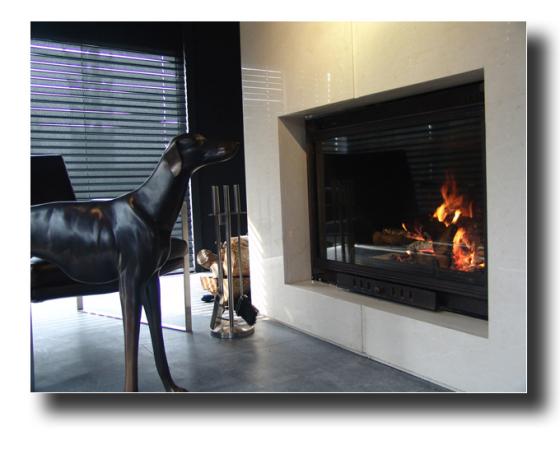 上海圣罗曼真火燃木嵌入式铸铁 壁炉 别墅壁炉图片