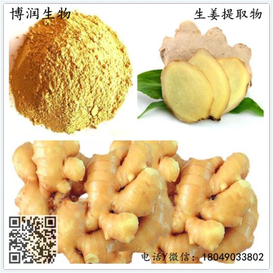 生姜提取物姜辣素20%博润生物黄油直供免费拿样烤生蚝厂家图片