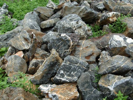 广东丰顺太湖石,质优价廉太湖石价格图片,广东丰顺太湖石,质优价图片