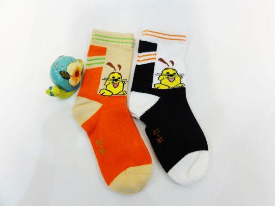 襪子圖片,襪子高清圖片-浙江華企襪業有限公司