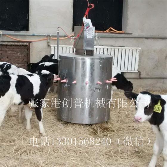 150L模具酸化奶流涎犊牛图片,150L设备喂奶奶酸化犊牛图片