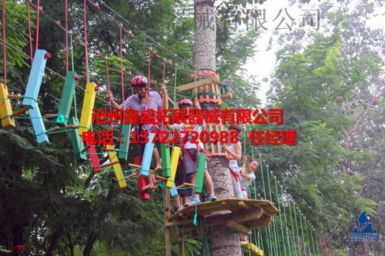 沧州鑫盛拓展生产制作森林探险丛林穿越拓展项目图片