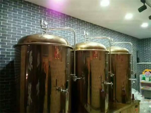 自酿啤酒设备如何高效过滤麦汁