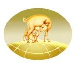 北京草原蒙羊乳品科技有限公司