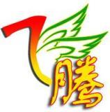 郑州飞腾化工有限公司