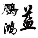 深圳市鵬鴻益包裝有限公司