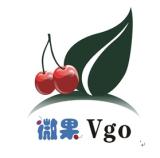 广州市微果电子有限公司