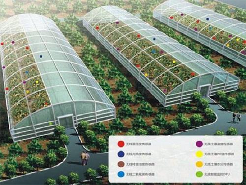 大棚温湿度监控系统促农业发展