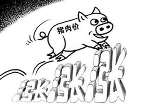 寒冬刺激豬價再度回升