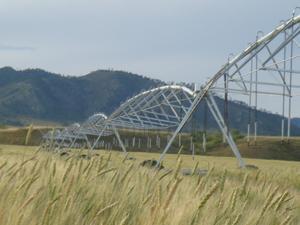 大型农业节水灌溉设备 DYP 385