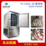 风冷速冻柜 小型急冻柜低温柜海鲜水饺包子  速冻机