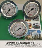 贺德克压力表HM-63-400RM14*1.5BF