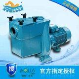 ATS300爱克水泵-游泳池循环水泵 游泳池过滤水泵 泳池设备