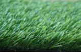 綠之洲屋頂綠化/圍擋人造草坪