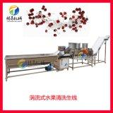 葡萄生产线 江门葡萄洒设备 葡萄清洗机