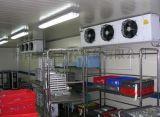 漯河制冰机、果蔬真空预冷机、熟食真空预冷机