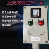 防爆操作柱遠程式控制制非標定制掛式/立式防爆防腐儀表箱