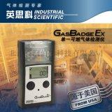 英思科GB Ex单一可燃气体检测仪