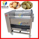 供應 電動土豆去皮機 自動馬蹄清洗機 毛刷去皮 噴淋水清洗