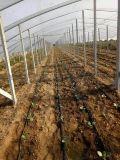 现货供应贵州大棚滴灌 滴灌带 滴灌管件 价格优惠