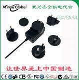 5V2A xinsuglobal IEC/UL/EN62368认证5V2A转接头电源适配器