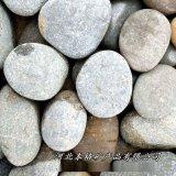 本格供應河灘石天然園林石頭魚缸裝飾鋪地鵝卵石景觀石