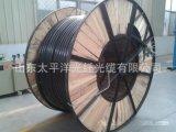 供应【太平洋】铜芯阻燃软电缆 聚氯乙烯 绝缘电缆 RV