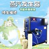蒸包子輔助設備蒸汽發生器 小型免檢節能鍋爐
