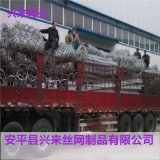 被动防护网,钢筋防护网,四川边坡防护网
