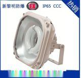 供應SBD1130防爆免維護節能泛光燈 廠家直銷
